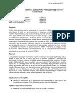 Informe Deshidratación Directa de Piña