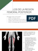 Musculos de la region femoral posterior.pptx