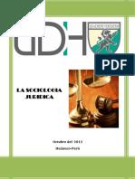 sociologia-juridica-docx.docx