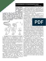 Del infantilismo y la victimización a la transformación social.docx