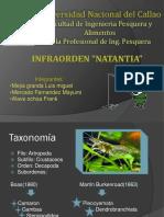 Exposion de Natantia 2