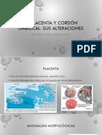 Placenta y Cordon Umbilical Alteraciones