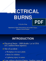 04.Electrical Burn - pre 3.ppt