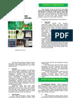 Booklet-Narkoba.pdf