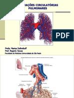Alteraçoes circulatórias puLmonares 2017