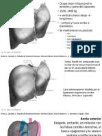 Hígado Propedeutíca