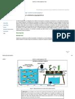Diseño de Un Sistema Aquapónico _ TECA
