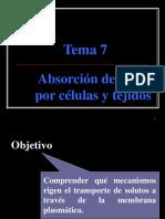 Tema_7-Absorcion_y_transporte_de_iones.ppt