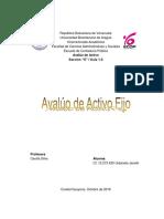 Informe Avaluo Activo Fijo