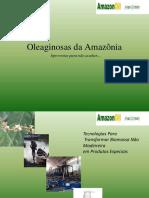 Apresentacao Amazonoil 2017