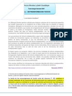 Biotransformacion Toxicos Orozco Morales Lizbeth Gpe. (1)