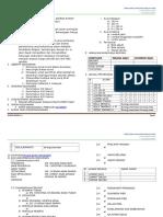 kertas_kerja_sukan_pibg_2010.doc