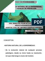 Historia Natural de La Enfermedad_2