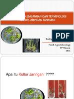 TPV - 8. Sejarah Dan Terminologi Kultur Jaringan