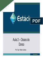 Dorso Ossos Articulacoesemusculos 150215144201 Conversion Gate01