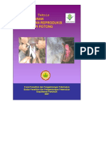 gangguan reproduksi.pdf