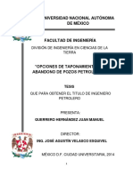 tesis-taponamiento.pdf
