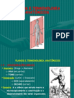 68260-Introdução à Anatomia