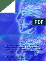 300520339-Neuropsicologia
