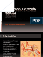 135551969-ESTUDIO-FUNCION-TUBARIA.pdf