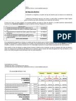 Flujo de Efectivo.pdf