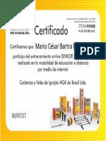 Certificado Sensor de Oxígeno