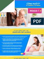 Guia de Estudio Modulo1