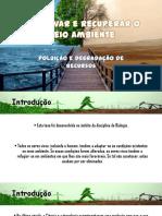 Poluição e Degradação de Recursos