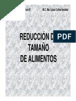 red_tam_solidos_intro.pdf