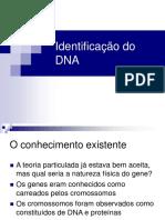 1Identificacao Do DNA DnaIdent