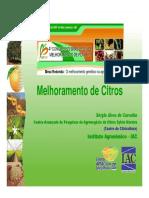 Melhoramento de Citrus - Sérgio Alves de Carvalho