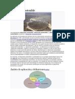 portafolio y historia.docx