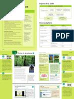 plantas.pdf