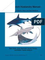 Elasmobranch Husbandry Manual 2004