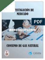 Investigación de Mercado Del Consumo de Gas Natural Cálida