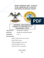 332064219-CRECIMIENTO-DEL-PARQUE-AUTOMOTRIZ-EN-LA-CIUDAD-DEL-CUSCO.docx