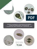 ManualtaxfotfitoplanctonChile.pdf