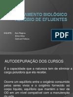 Tratamento Biológico Aeróbio de Efluentes