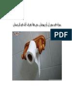 شيعة الحكم وشيعة اللطم وشيعة البصم