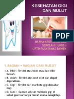 Kesehatan Gigi Dan Mulut 2013 Yess