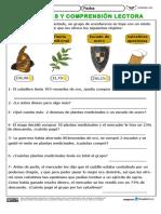 Problemas_y_comprensión_lectora_02.pdf