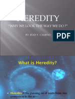 Heredity Why You Look the Way You Do