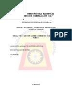 347892129-Tlc-Peru-china-2017.doc
