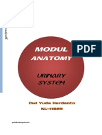 Urinary System Modul Anatomy.yudaherdantoproduction.pdf