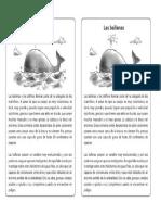 Articulo Informativo Ejemplo