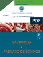 Ciencia y Tecnologia de La Carne (1)