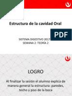 Teoría 2 Cavidad Oral