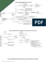 CRITERIOS ORGANIZADORES DE LA ENSEÑANZA 2.pdf