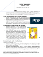 DIROFILARIOSIS.doc