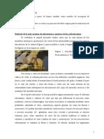 Necropsia en perro.pdf